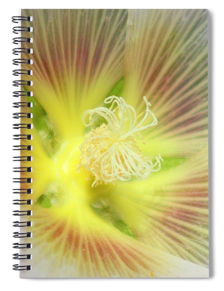 Yellow Flower Spiral Notebook featuring the photograph Center Sensation by Matthew Wilson