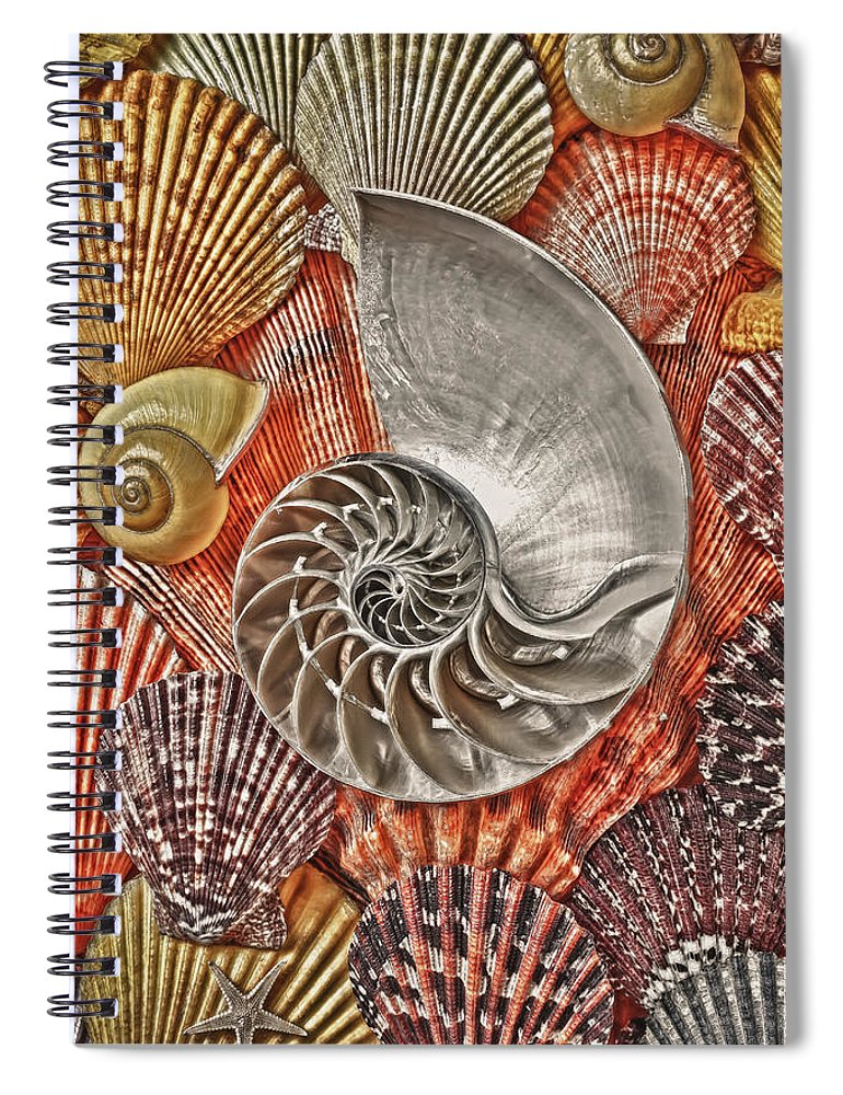 Chambered Nautilus Spiral Notebook featuring the photograph Chambered Nautilus Shell Abstract by Garry Gay