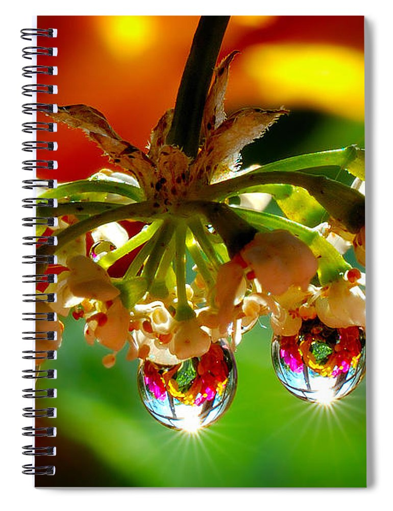Chandelier Spiral Notebook featuring the pyrography Chandelier From The Rain Drops by Yuri Hope