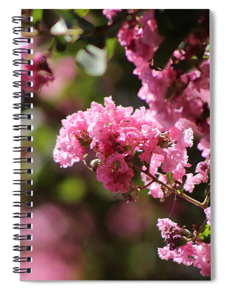 Chateau Rose Spiral Notebook featuring the photograph Chateau Rose Pink Flowering Crepe Myrtle by Colleen Cornelius