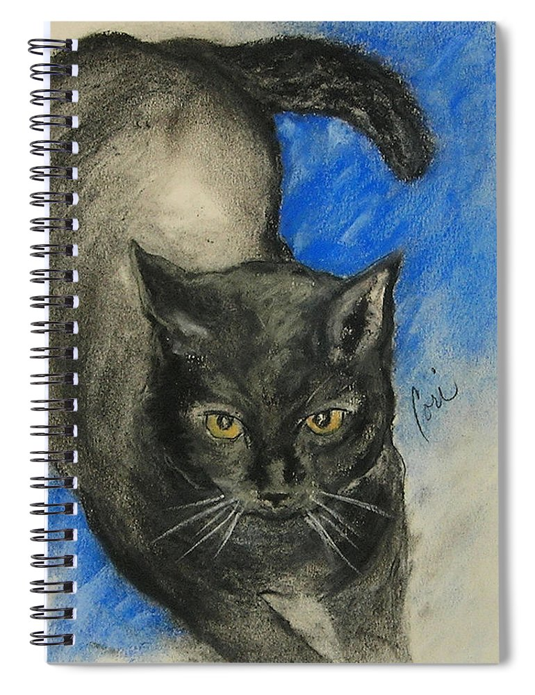 Cat Spiral Notebook featuring the drawing Chloe by Cori Solomon