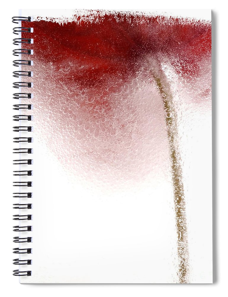 Background White Spiral Notebook featuring the photograph Close-up Of Droplets Of Water On A Tulip by Bernard Jaubert