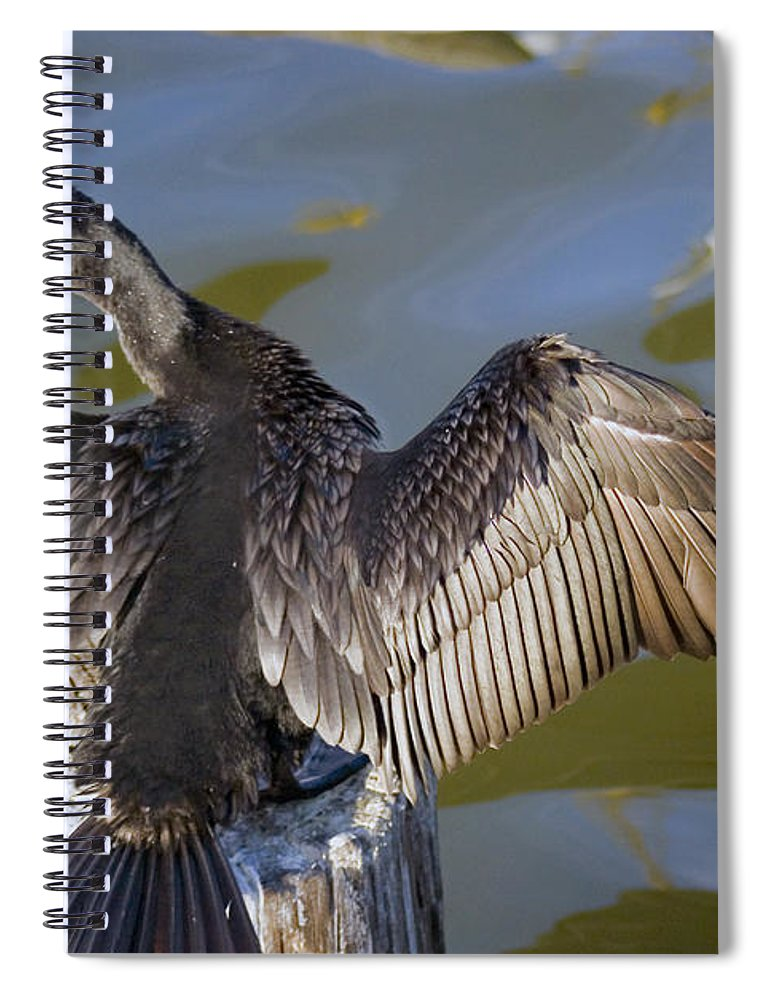 Neotropic Cormorant Spiral Notebook featuring the photograph Cormorant looking back by Robert Brown