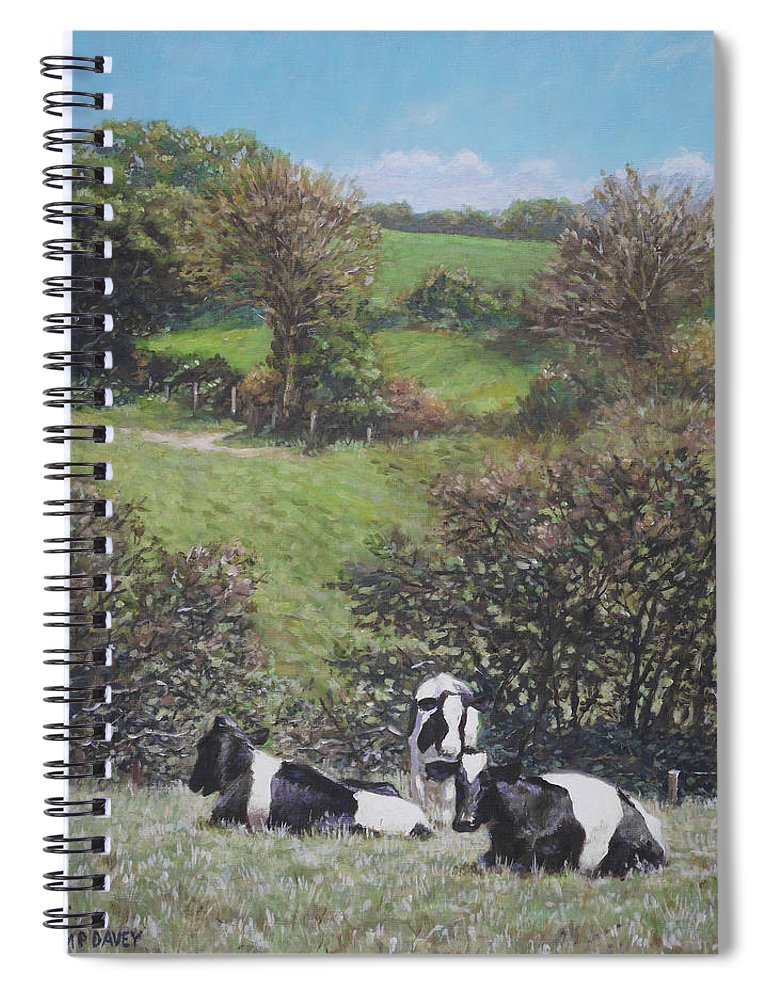Cows Spiral Notebook featuring the painting Cows Sitting By Hill Relaxing by Martin Davey