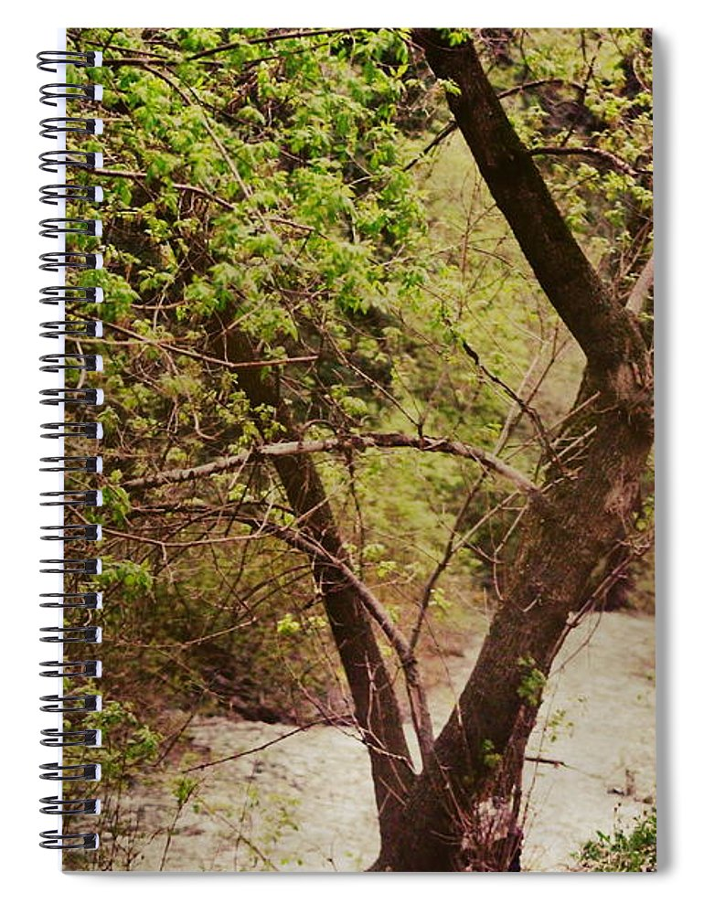 Dreamy Spiral Notebook featuring the photograph Cozy Stream in American Fork Canyon Utah by Colleen Cornelius