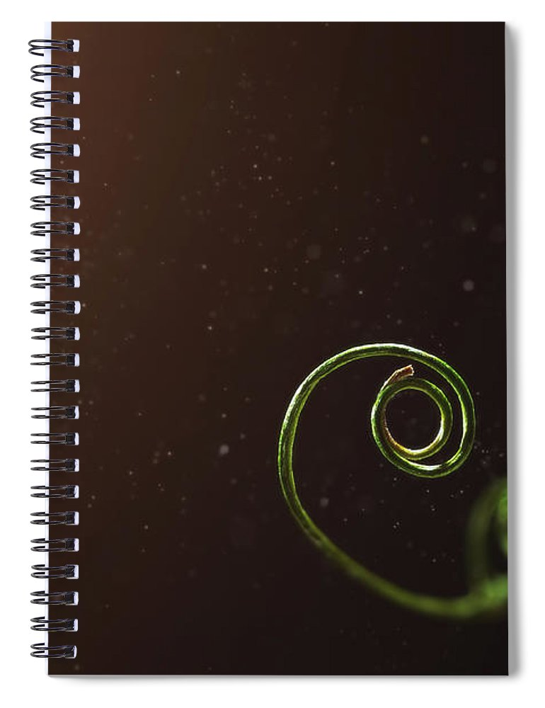 Pea Spiral Notebook featuring the photograph Curl - A Pea Pod Shoot by Scott Norris