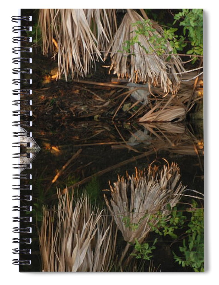 Sunset Spiral Notebook featuring the photograph Cyclops In Color by Rob Hans