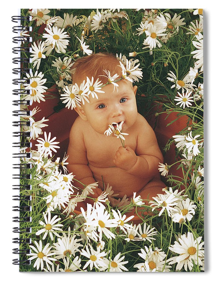Daisies Spiral Notebook featuring the photograph Daisies by Anne Geddes
