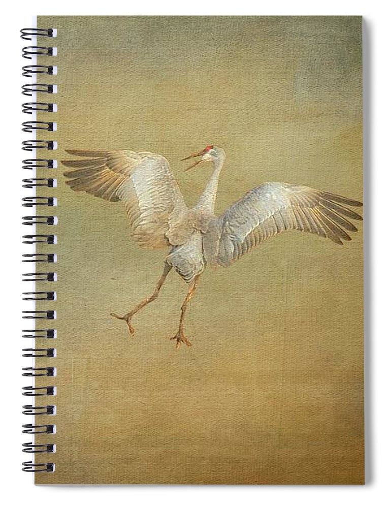 Nature Spiral Notebook featuring the photograph Dance Ritual II, Sandhill Cranes by Zayne Diamond Photographic