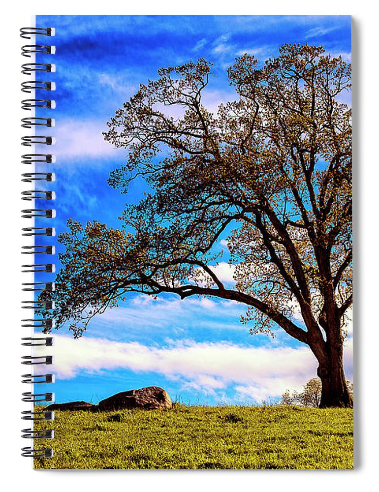 Farm Spiral Notebook featuring the photograph De Hoek Farm by Grant Dupill