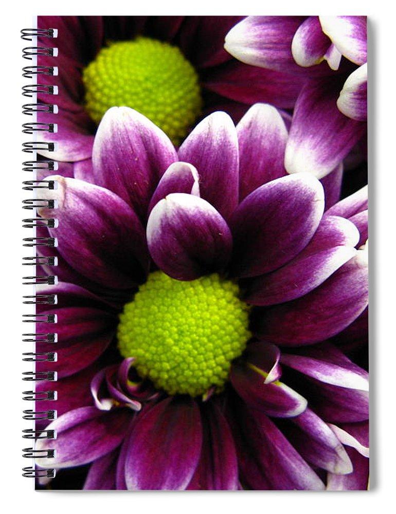 Purple Spiral Notebook featuring the photograph Delicate Purple by Rhonda Barrett