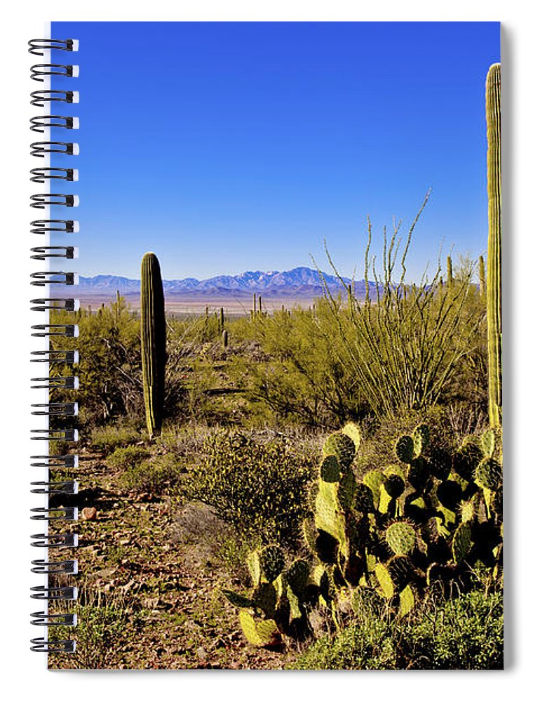 Desert Spring Spiral Notebook featuring the photograph Desert Spring by Chad Dutson