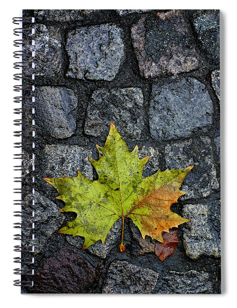 Nature Spiral Notebook featuring the photograph Deville by Skip Hunt