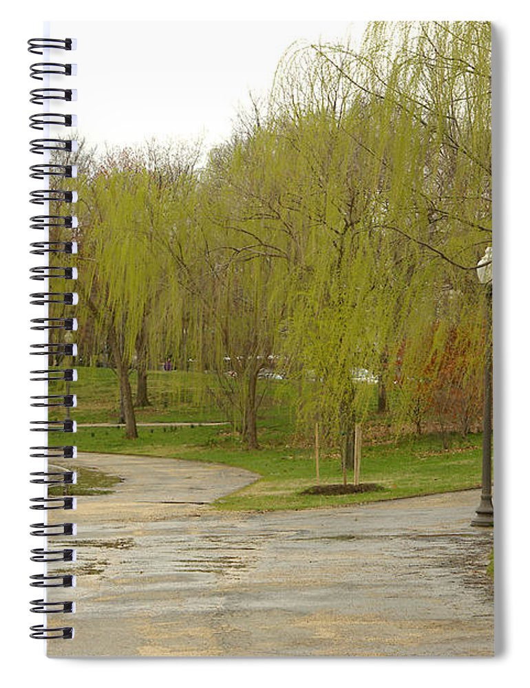 Landscape Park Washington Willow Tree Lake Spiral Notebook featuring the photograph Dnrf0401 by Henry Butz