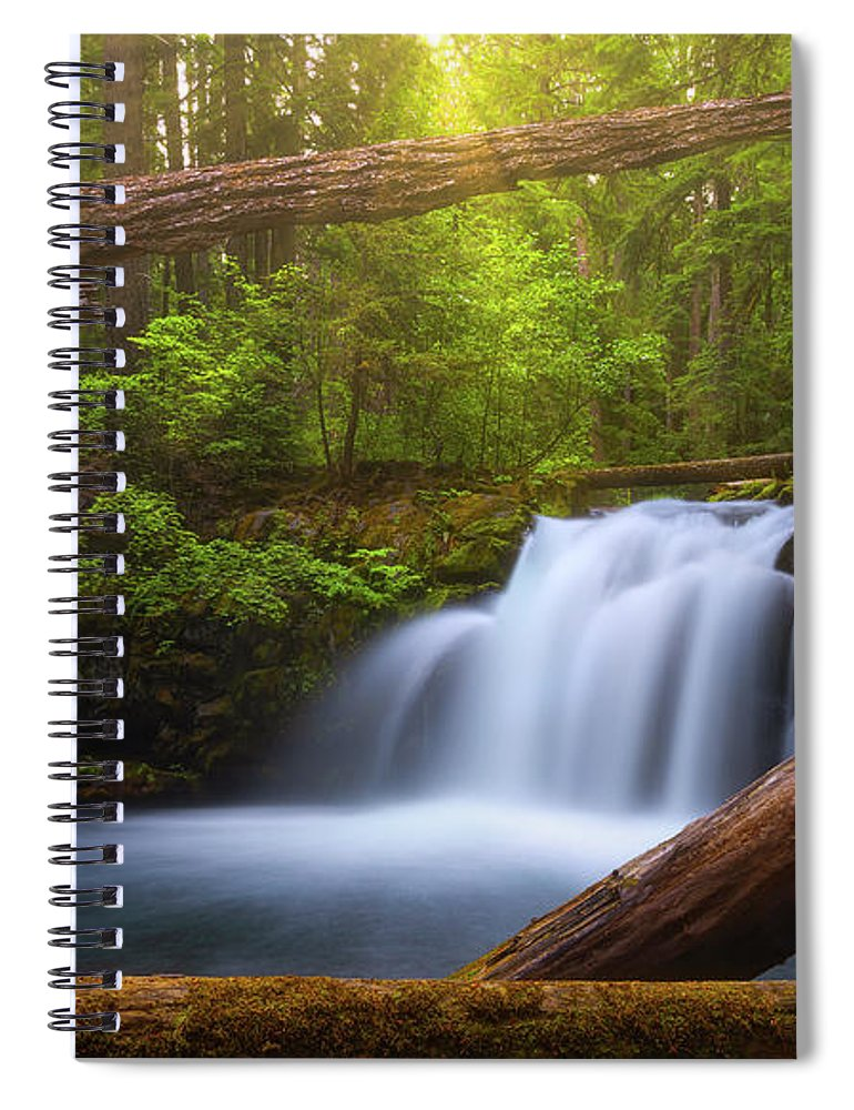 Sunlight Spiral Notebook featuring the photograph Enchanted Forest by Darren White
