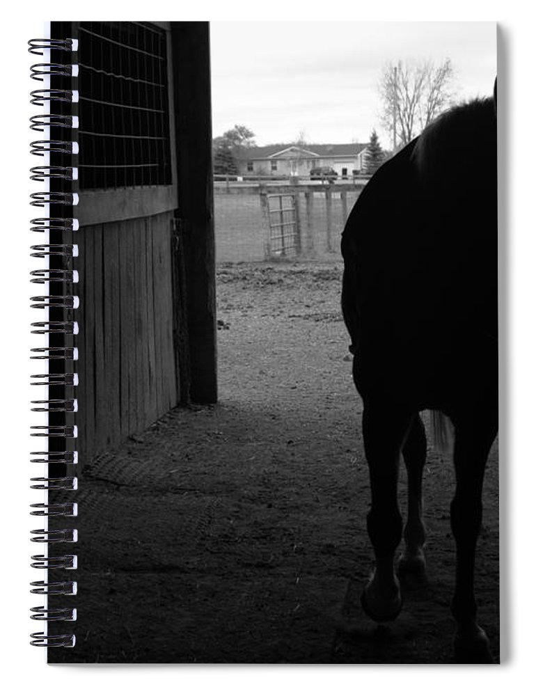 Horse Spiral Notebook featuring the photograph Equus Sapien Vi by J M Lister