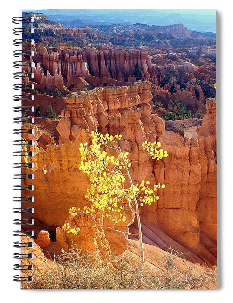 Bryce Canyon National Park Spiral Notebook featuring the photograph Fall In Bryce Canyon by Marty Koch