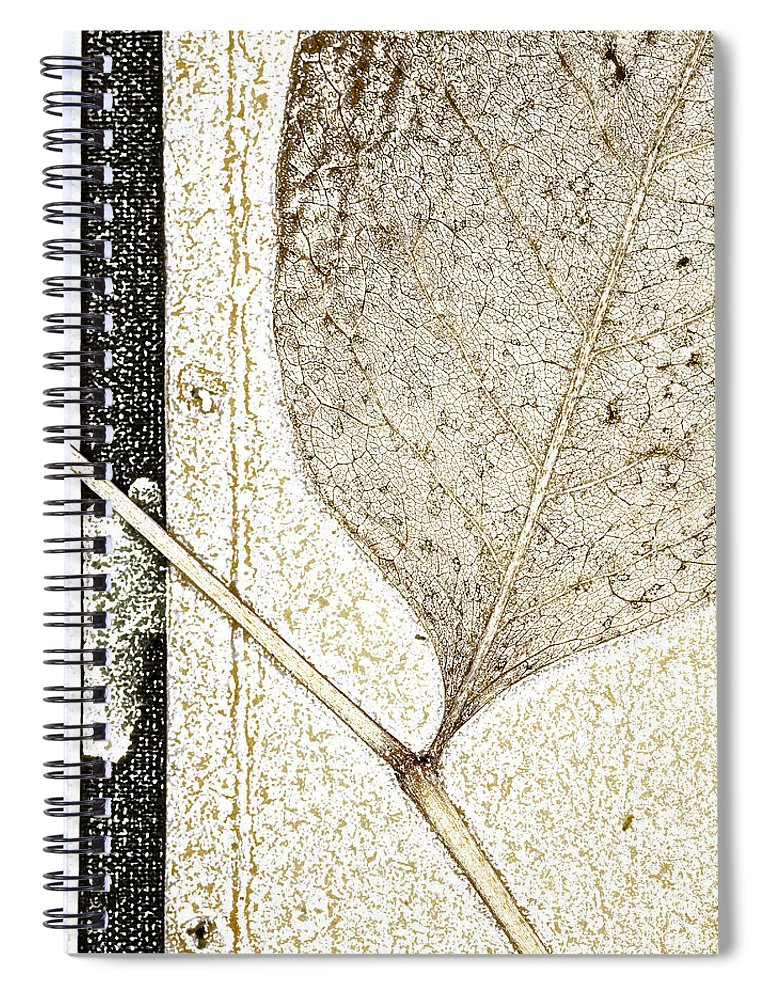 Leaf Spiral Notebook featuring the photograph Fallen Leaf Two Of Two by Carol Leigh
