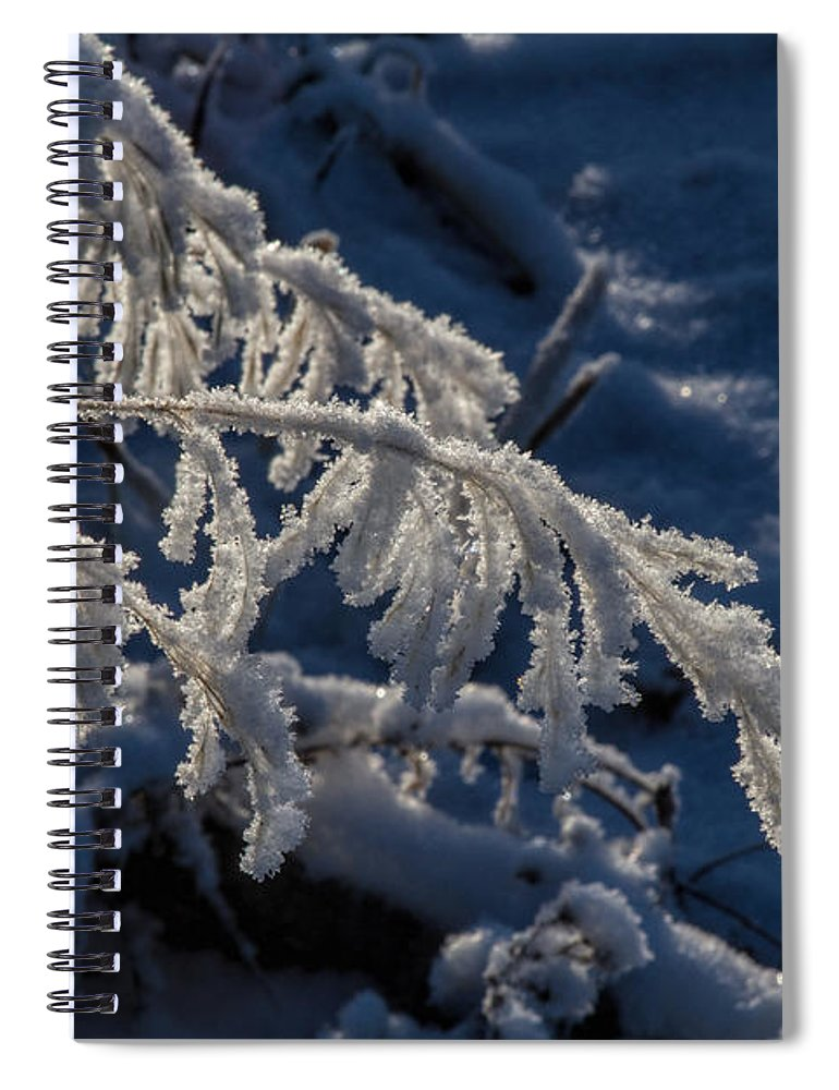Frost Spiral Notebook featuring the photograph First Light by Alana Thrower