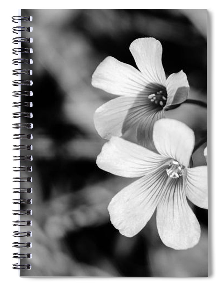 Blossom Spiral Notebook featuring the photograph Floral Black And White by Andrea Anderegg