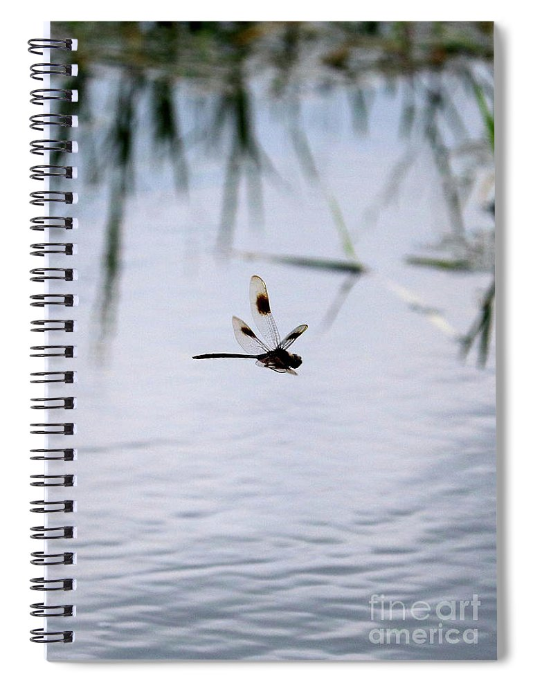 Dragonfly Spiral Notebook featuring the photograph Flying Dragonfly Over Pond With Reeds by Carol Groenen