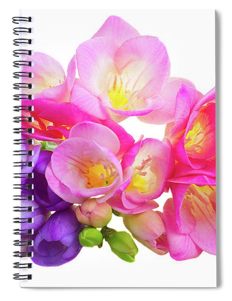 Fresh pink and violet freesia flowers spiral notebook for sale by freesia spiral notebook featuring the photograph fresh pink and violet freesia flowers by anastasy yarmolovich mightylinksfo