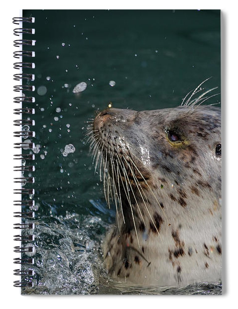 Popeye Spiral Notebook featuring the photograph Friday Harbor's Popeye by Betsy Knapp