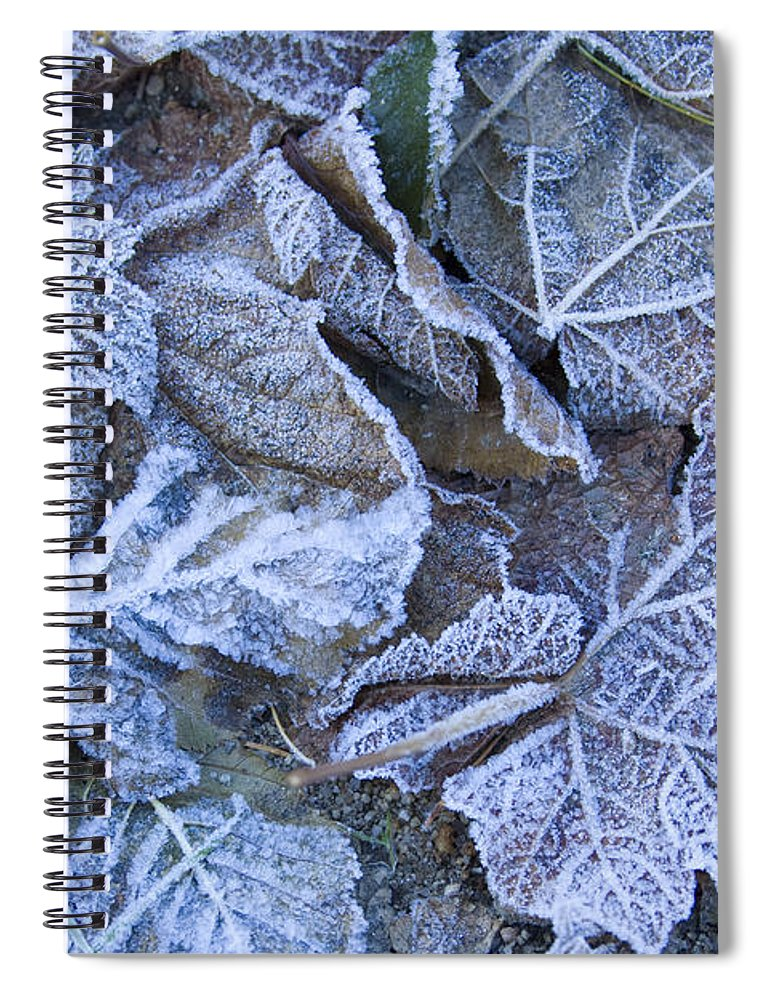 Frost Spiral Notebook featuring the photograph Frost by Idaho Scenic Images Linda Lantzy
