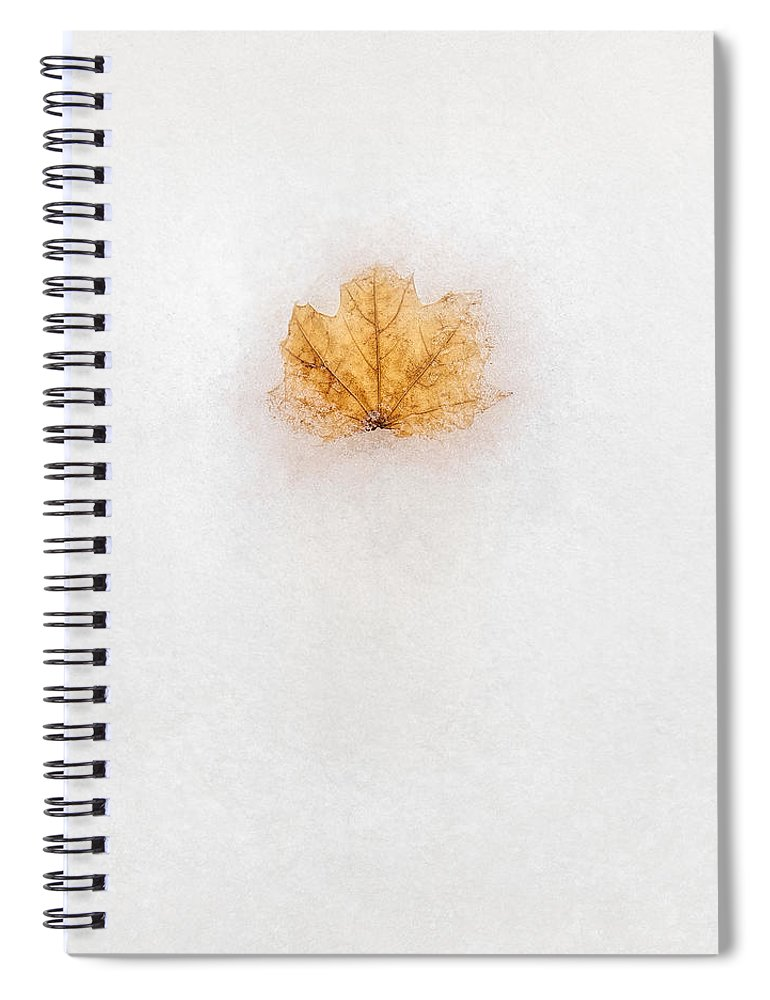 Scott Norris Photography Spiral Notebook featuring the photograph Frozen in Time by Scott Norris