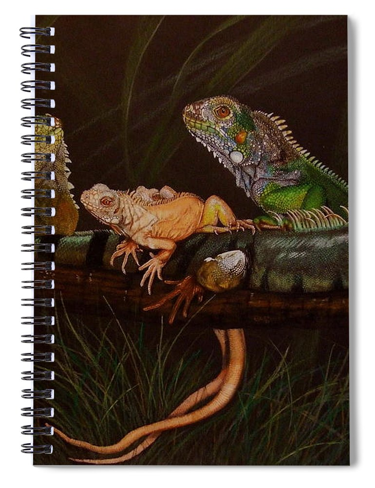Iguana Spiral Notebook featuring the drawing Full House by Barbara Keith