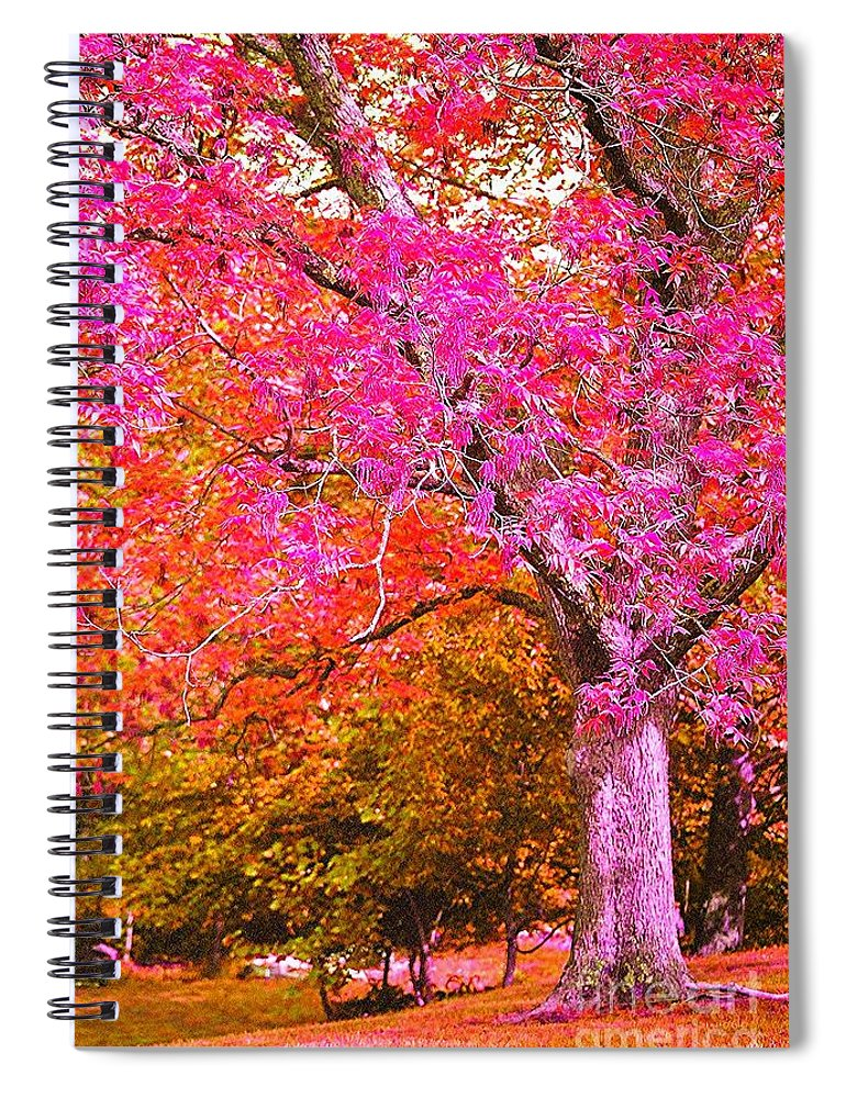 Fuschia Spiral Notebook featuring the photograph Fuschia Tree by Nadine Rippelmeyer