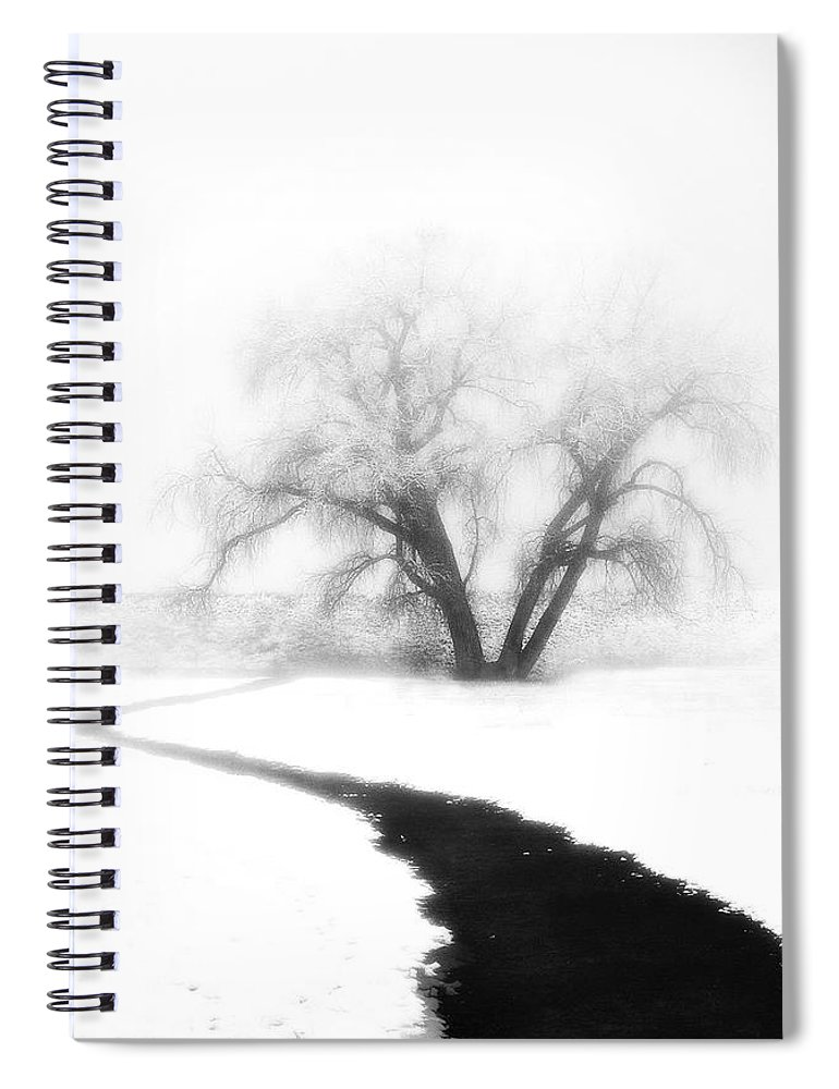 Tree Spiral Notebook featuring the photograph Getting There by Marilyn Hunt