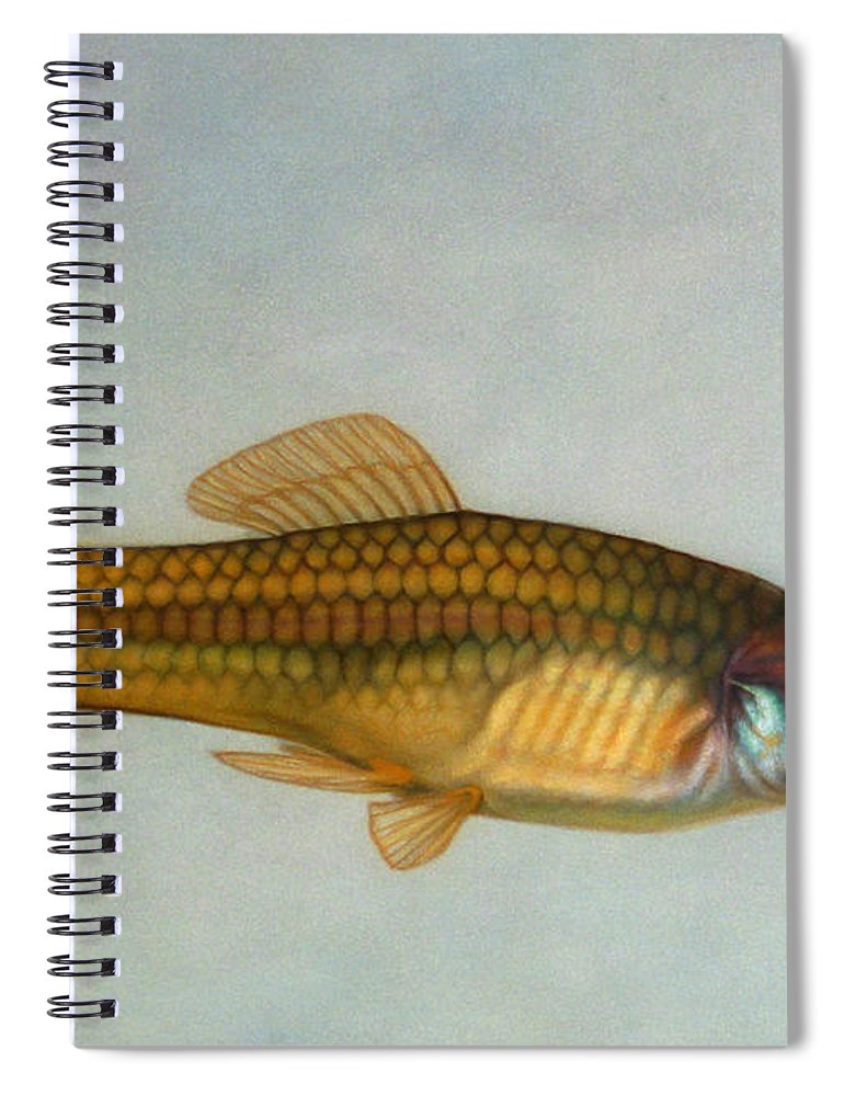 Fish Spiral Notebook featuring the painting Go Fish by James W Johnson