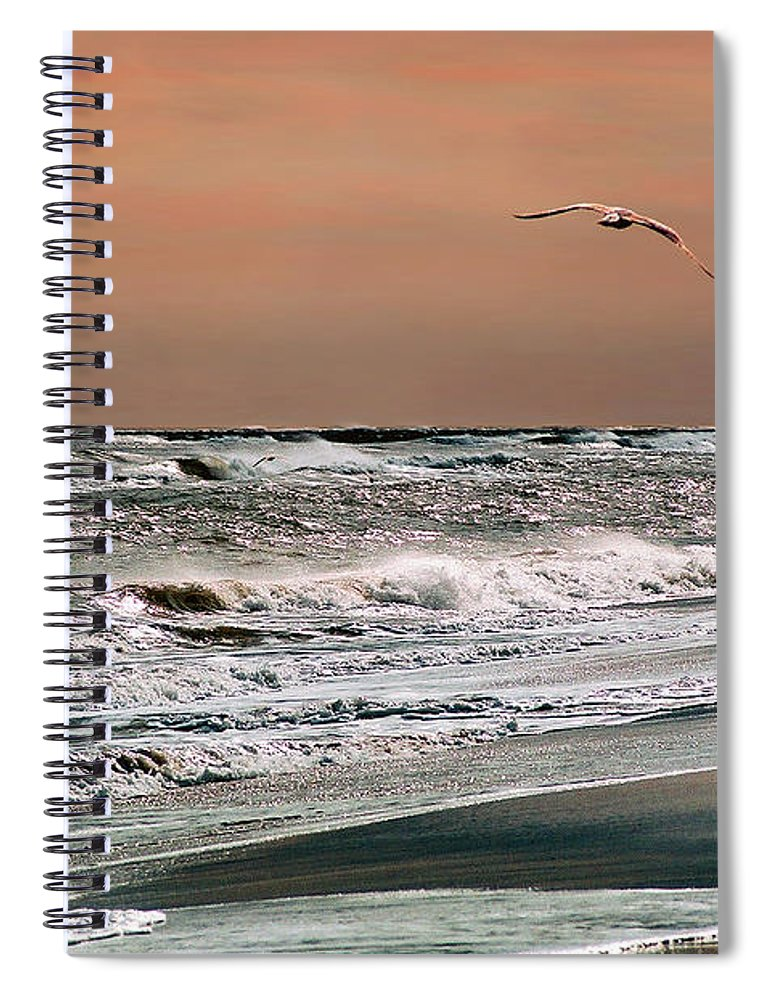 Seascape Spiral Notebook featuring the photograph Golden Shore by Steve Karol