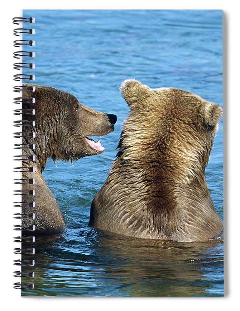 00340360 Spiral Notebook featuring the photograph Grizzly Bear Talk by Yva Momatiuk and John Eastcott
