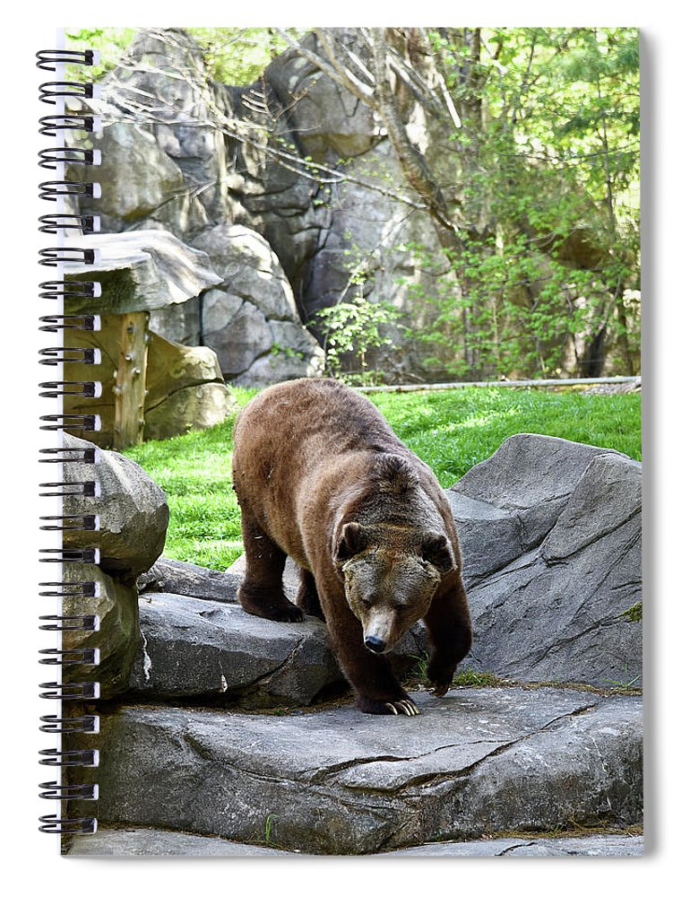 Grizzly Spiral Notebook featuring the photograph Grizzly by Sherri Johnson
