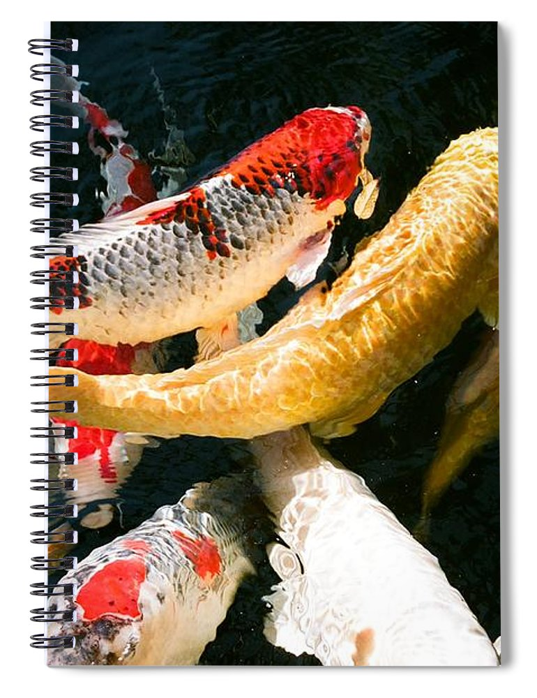 Fish Spiral Notebook featuring the photograph Group of Koi Fish by Dean Triolo