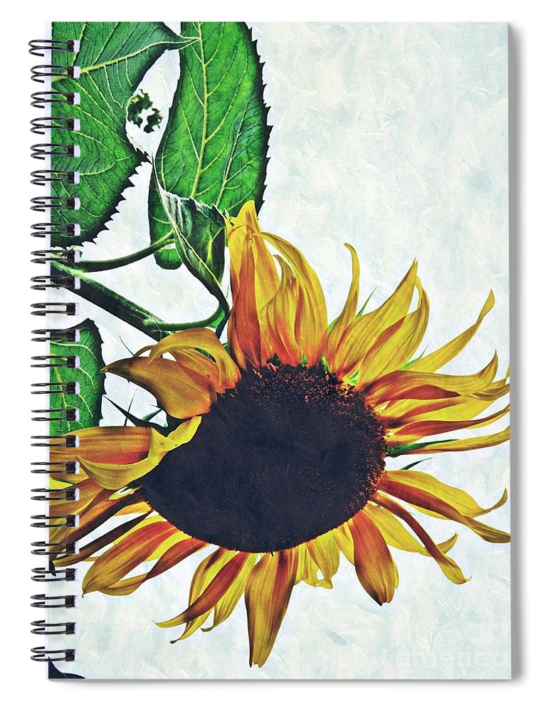 Sunflower Spiral Notebook featuring the photograph Hung Over by Sarah Loft