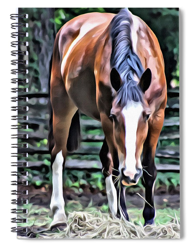 Horse Spiral Notebook featuring the photograph Hungry Horse 1 by Modern Art