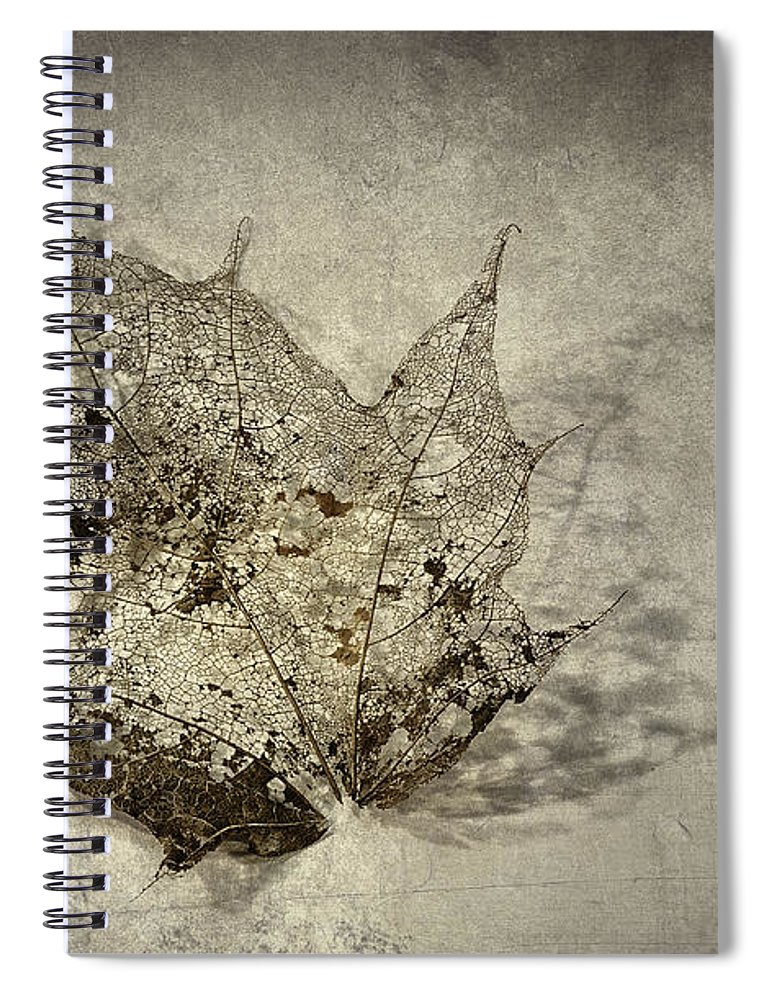 Autumn Leaf Spiral Notebook featuring the photograph I Miss You Most of All by Scott Norris