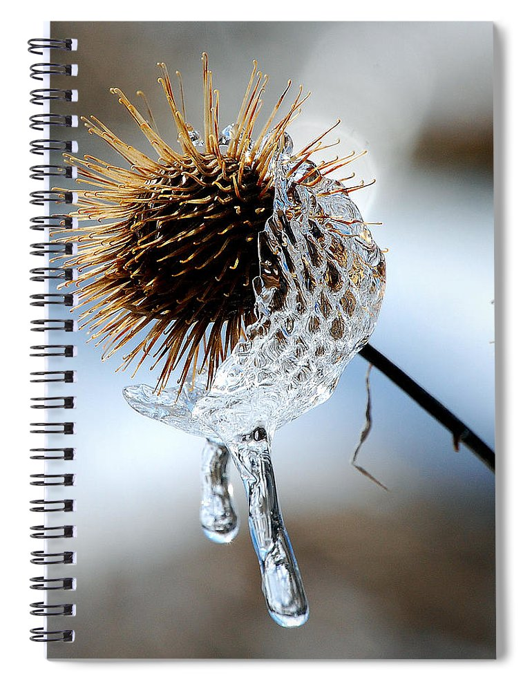 Nature Spiral Notebook featuring the photograph Ice on Burdox by Lisa Kane