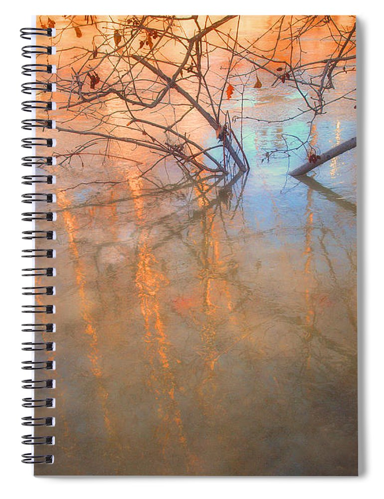 Ice Spiral Notebook featuring the photograph Ice Reflections 2 by Tara Turner