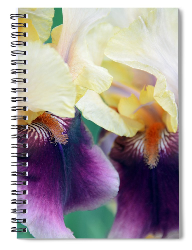 Iris Spiral Notebook featuring the photograph In Love With Iris by Angelina Tamez