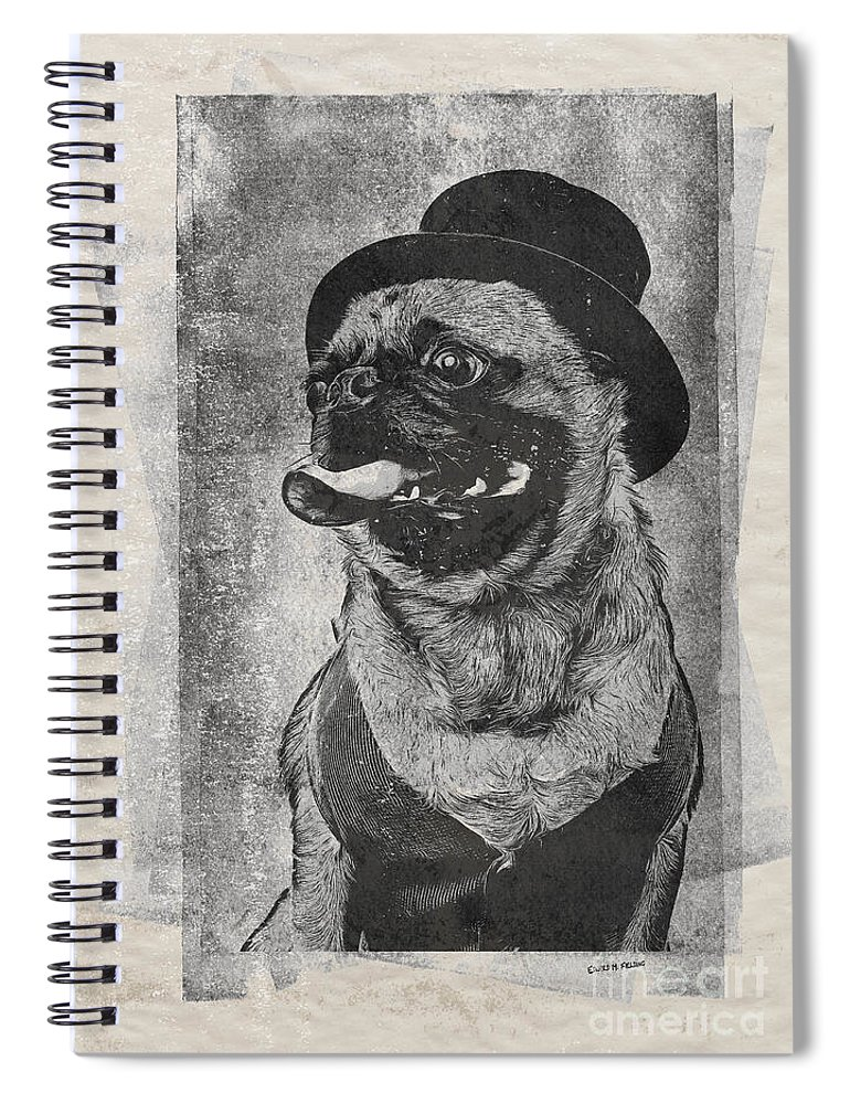 Dog Spiral Notebook featuring the drawing Inky Pug by Edward Fielding