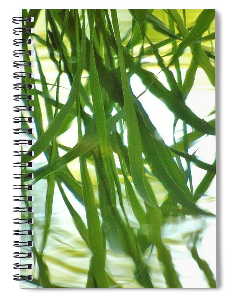 Iris Spiral Notebook featuring the photograph Iris Reflections by Barbara St Jean
