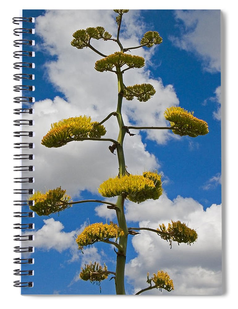 Blue Spiral Notebook featuring the photograph Jacobs Ladder by Skip Hunt