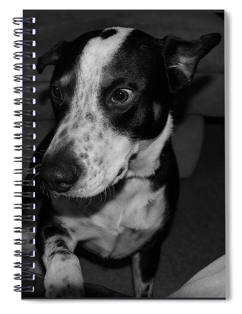 Black And White Spiral Notebook featuring the photograph Jimmy by Rob Hans