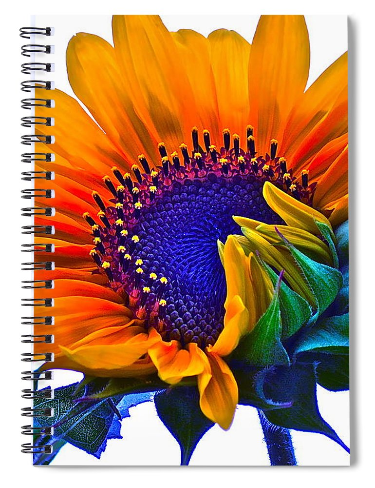 Photographs Spiral Notebook featuring the photograph Joyful by Gwyn Newcombe
