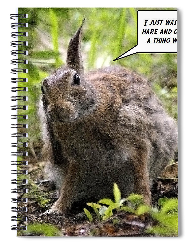 2d Spiral Notebook featuring the photograph Just Washed My Hare by Brian Wallace