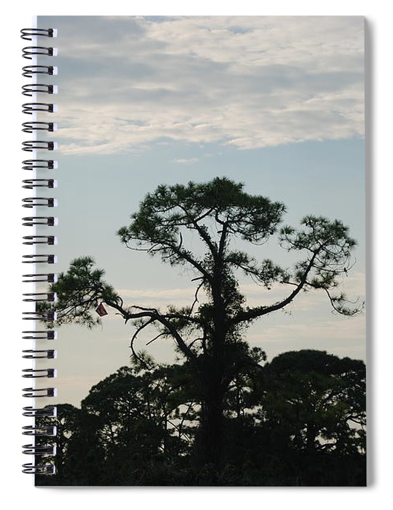Kite Spiral Notebook featuring the photograph Kite In The Tree by Rob Hans